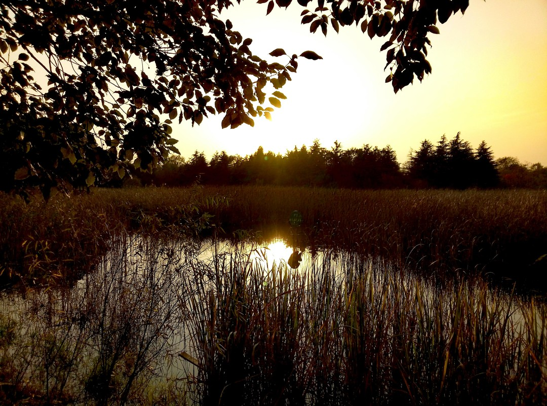 落霞与孤鹜齐飞,秋水共长天一色